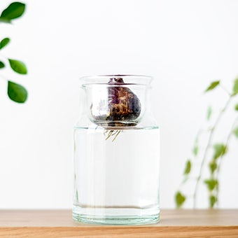 リューズガラス/球根ベース/花瓶(S)の商品写真