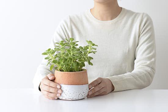 植木鉢/ポエル・S(径11cm)の商品写真