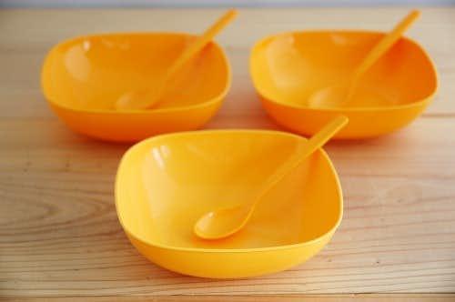 スウェーデンで見つけたピクニックセット(オレンジ)の商品写真