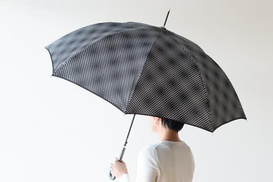 【在庫限り取り扱い終了】Lisbet friis/長傘/Flower Power mini(ブラック)の商品写真