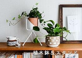 植木鉢&鉢スタンドの画像