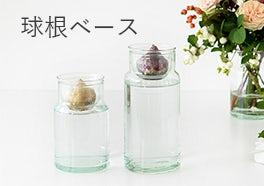 球根ベース/花瓶の画像