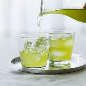 【今季終了】EN TEA/水出し緑茶/ゆず(ティーバッグ7個入り)の商品写真