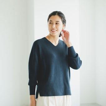 「衣替えいらずの賢い相棒」Vネックのコットンニット / ネイビーの商品写真