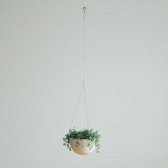 KINTO プラントポット / 植木鉢(5号鉢) / ベージュの商品写真