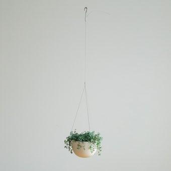 【次回7月下旬入荷予定】KINTO プラントポット / 植木鉢(5号鉢) / ベージュの商品写真